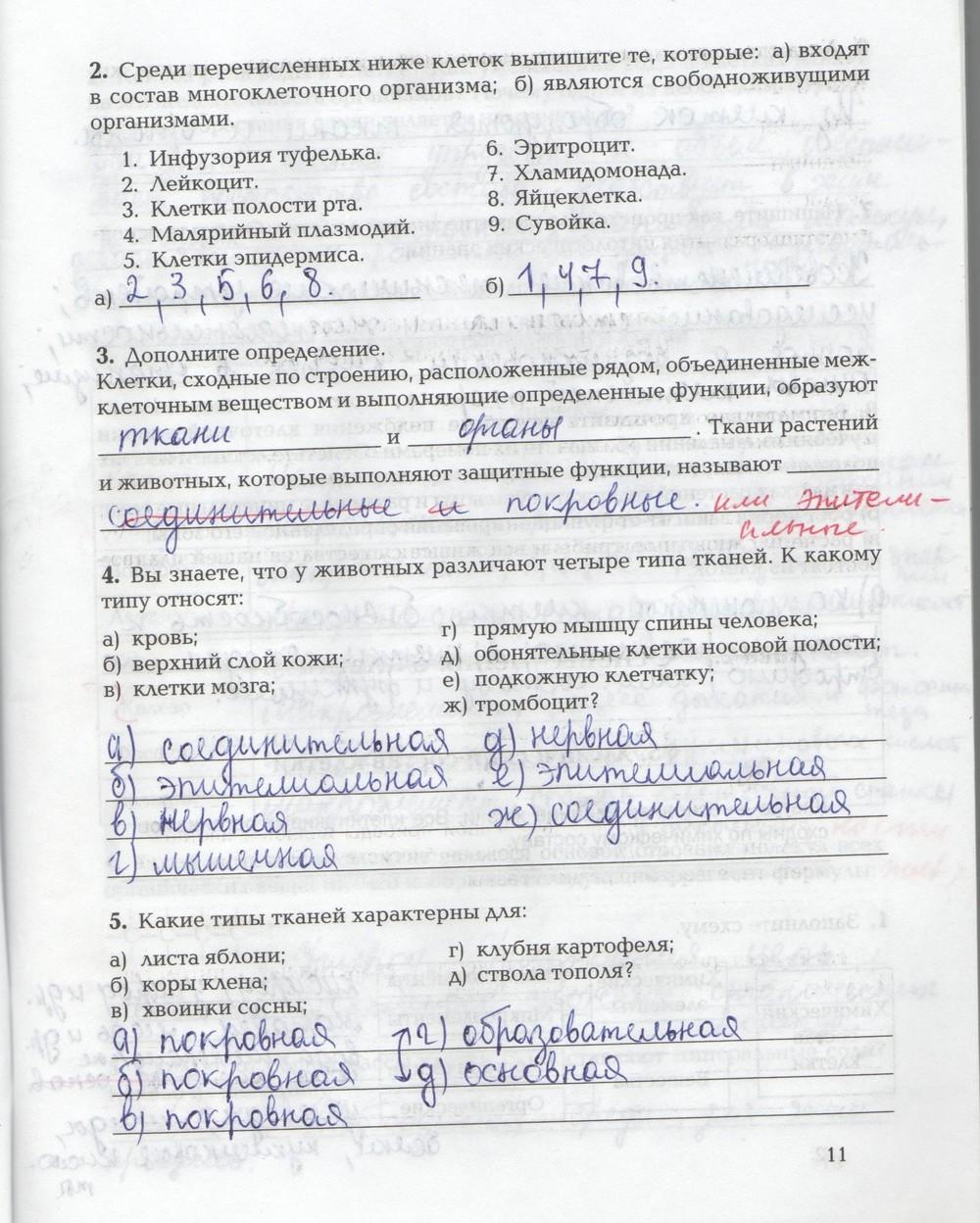 Биология козлова быковский 7-8 класс