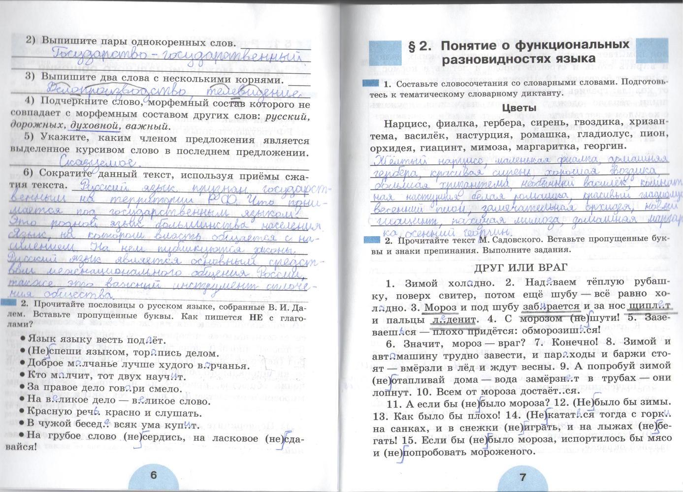 упражнение по русскому языку 6 класса рыбченкова